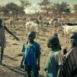 Cómo el cambio climático afecta hoy el acceso a los alimentos